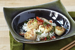 Thai Style Seared Scallops with Coconut Milk Sauce